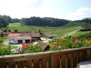 Aussicht vom Balkon des Ferienhauses